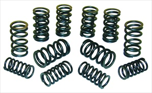Bugpack Racing Dual Valve Springs, Set of 8