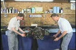 Bug Me Video How-to DVD, Type 4 Engine Rebuild with Jake Raby, Volume 8